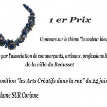 """Concours sur le thème """"BLEU"""" 2007"""